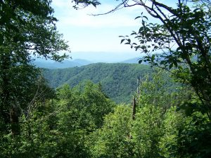 great-smoky-mountains-national-park-126051297202143r9P